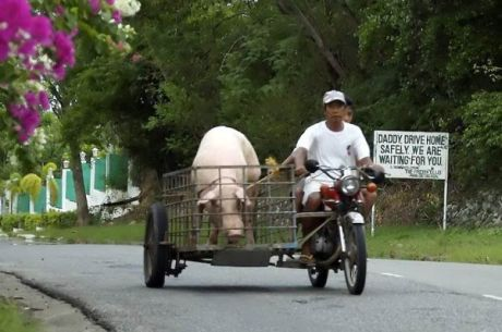 Motorcycle Sidecar 6