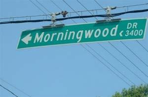 morningwooddrjo7