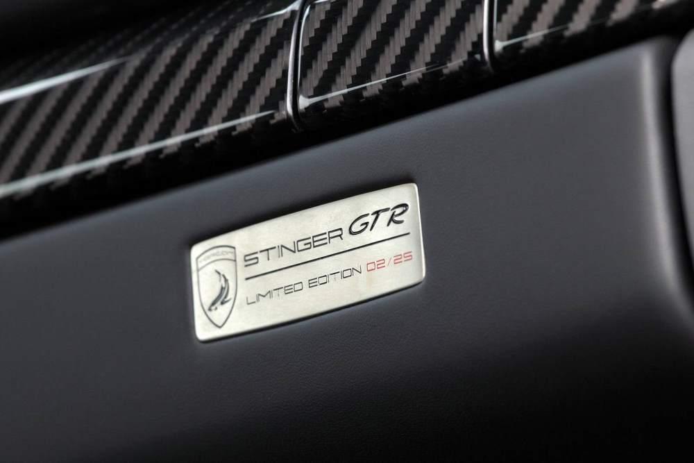 Stinger GTR Porsche 911 Plaque