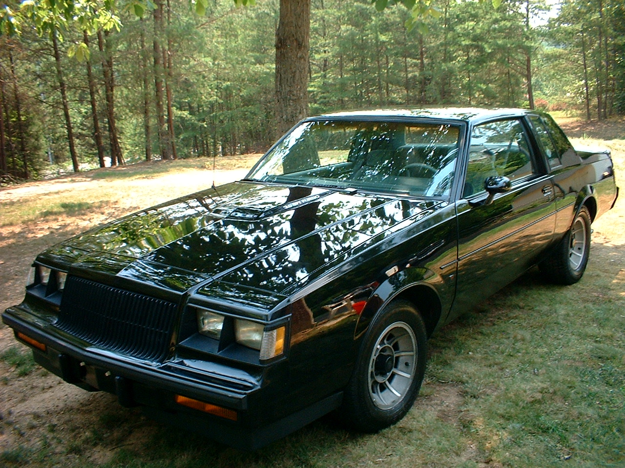 10 Cars You Never Knew Had Balls Kia 2000s Wiring Diagrams 1987 Buick Regal Turbo T