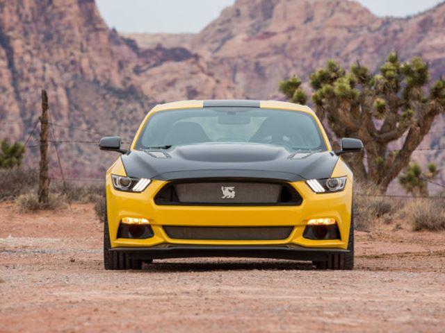 Shelby Terlingua Mustang 3
