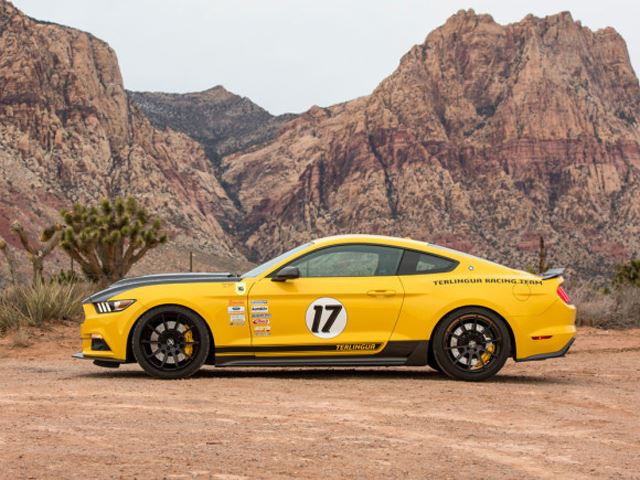 Shelby Terlingua Mustang 5