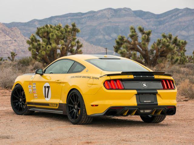 Shelby Terlingua Mustang 7