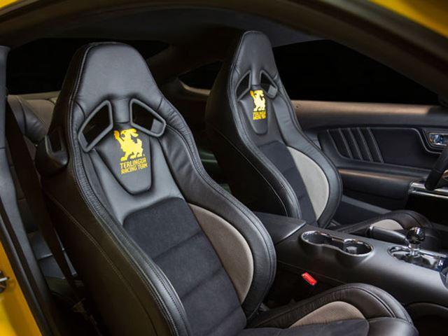 Shelby Terlingua Mustang 2