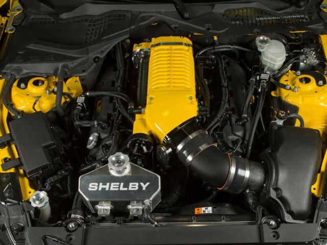 Shelby Terlingua Mustang 8