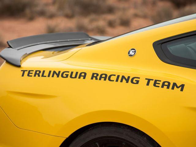 Shelby Terlingua Mustang 10