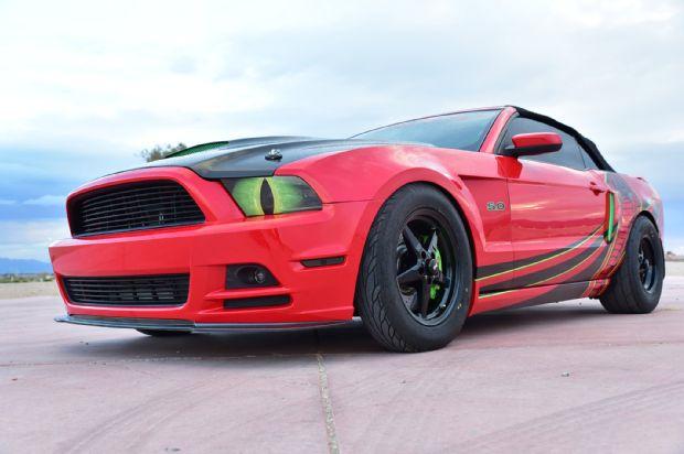 Mustang Snake Eyes 1
