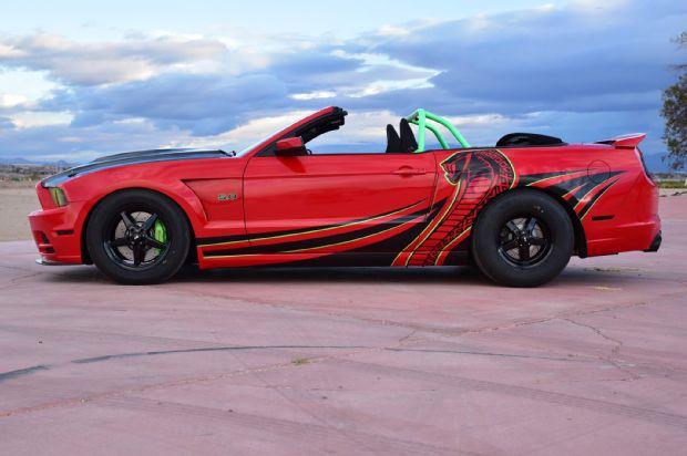 Mustang Snake Eyes 2