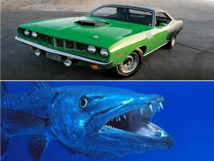#11. Plymouth Barracuda