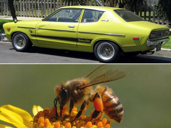 #3. Datsun Honey Bee