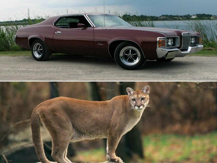 #7. Mercury Cougar