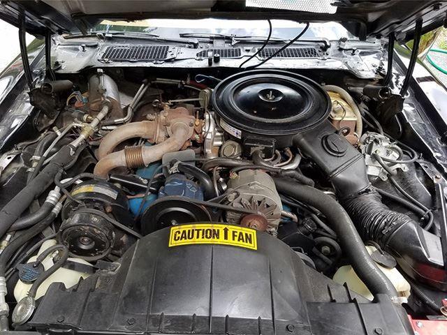 1980 firebird trans am engine