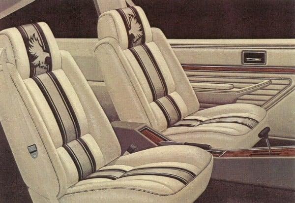 Old Buick Models - 1979-1980 Skyhawk Roadhawk Interior