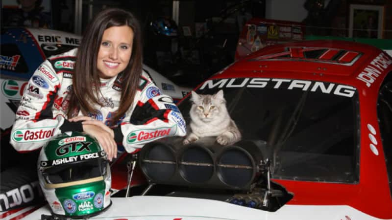 Hot car girls and cats.