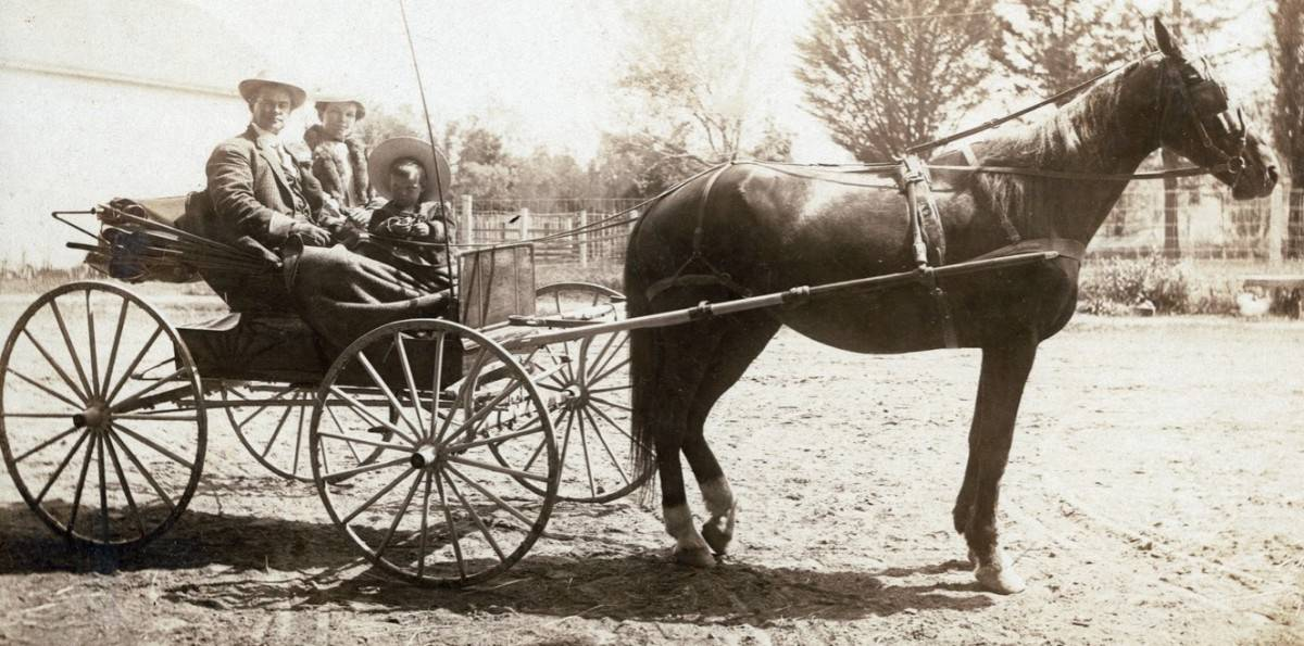 1800's horse drawn carriage